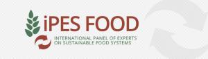 IPES logo